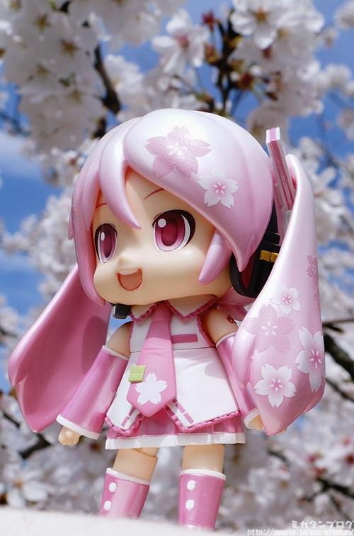 愛らしい桜みくだよーさん.jpg