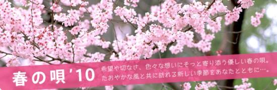 bnr_top_spring10_02.jpg